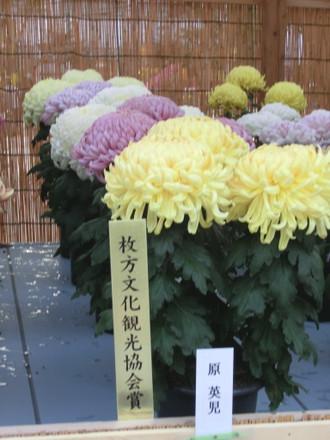 枚方文化観光協会賞受賞のだるま作り 五鉢組