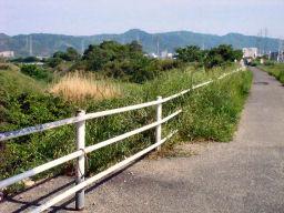 自転車道の様子