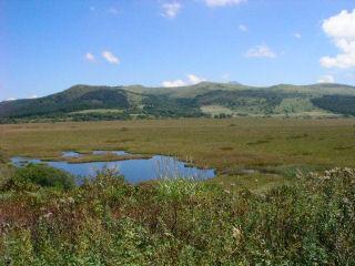 八島湿原全景