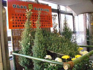駅コンコースの総合花壇