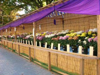会場の花壇