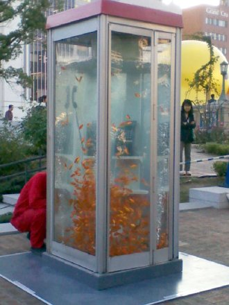金魚の大群入り電話ボックス