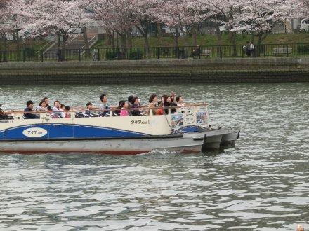 観光船その3