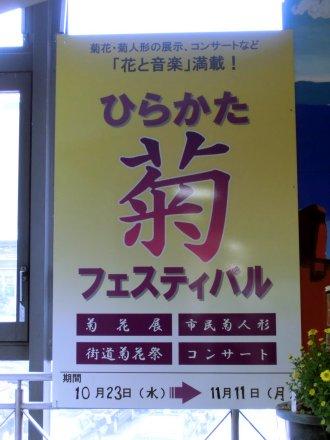 菊フェスティバルのポスター